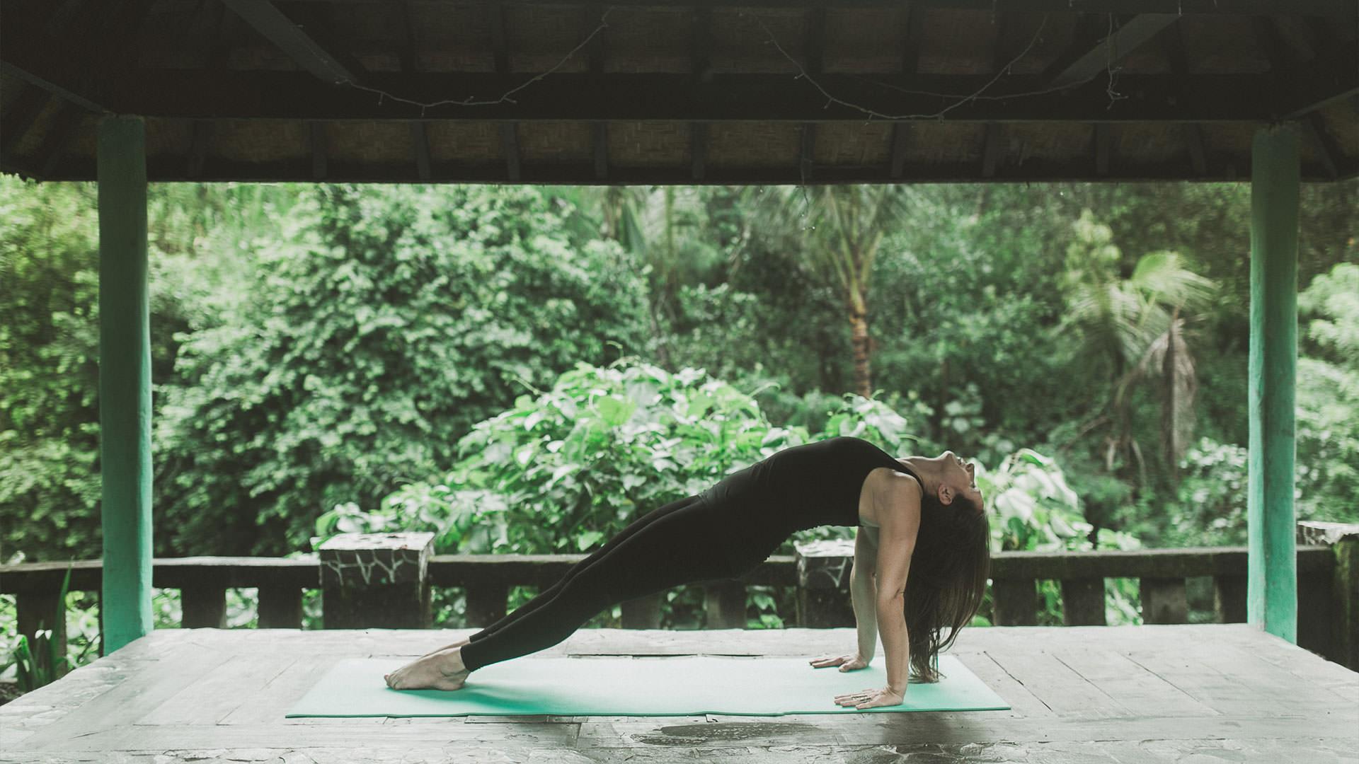 wahrhaft yoga asthanga yurveda
